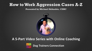 Dog Trainers Connection